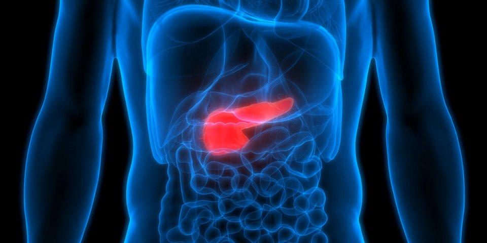 Cancer du pancréas : 5 conseils pour s'en protéger