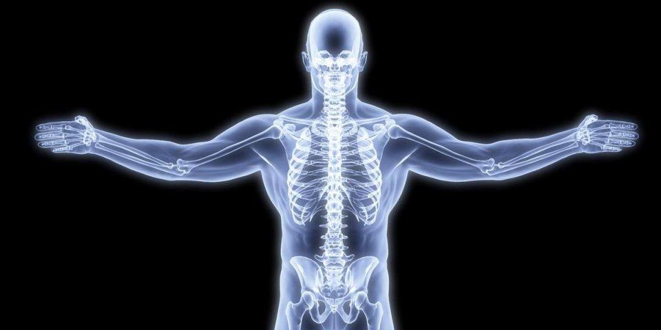 corps humain par rayons x rendu 3d