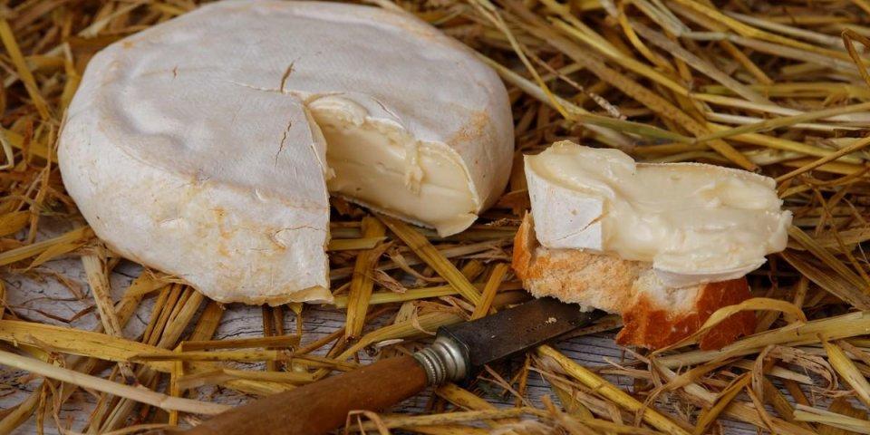 Rappel de fromages au lait cru contaminé par E.Coli