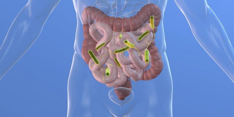5 signes qui montrent que votre microbiote est déréglé