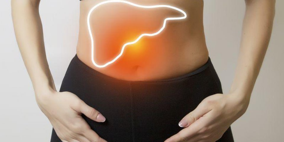 woman figure with visualisation of liver