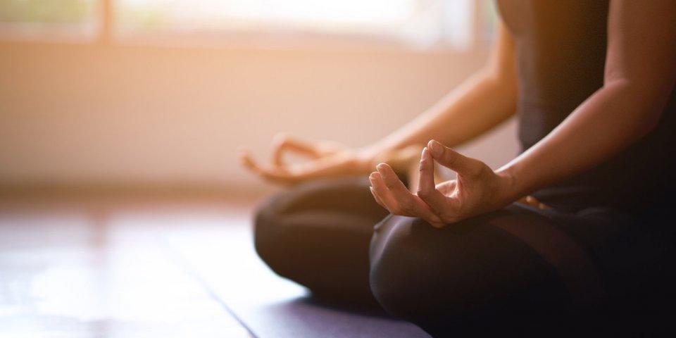 Le salon Zen ouvre ses portes !