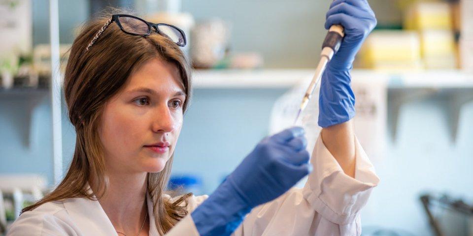 Coronavirus : et si la chloroquine, traitement contre le paludisme, était la solution ?