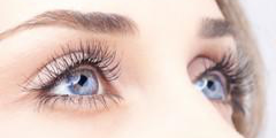 yeuxp