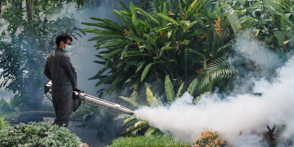 Moustique tigre : un nouveau cas de dengue dans les Bouches-du-Rhône