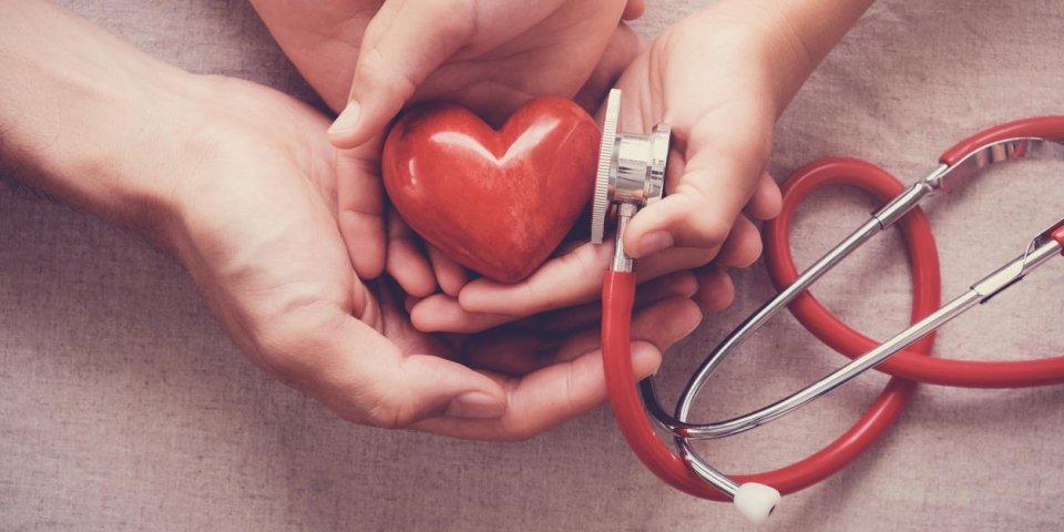Un premier cœur vivant transplanté au CHU de Lille