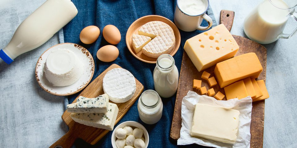 different types of dairy products and eggs