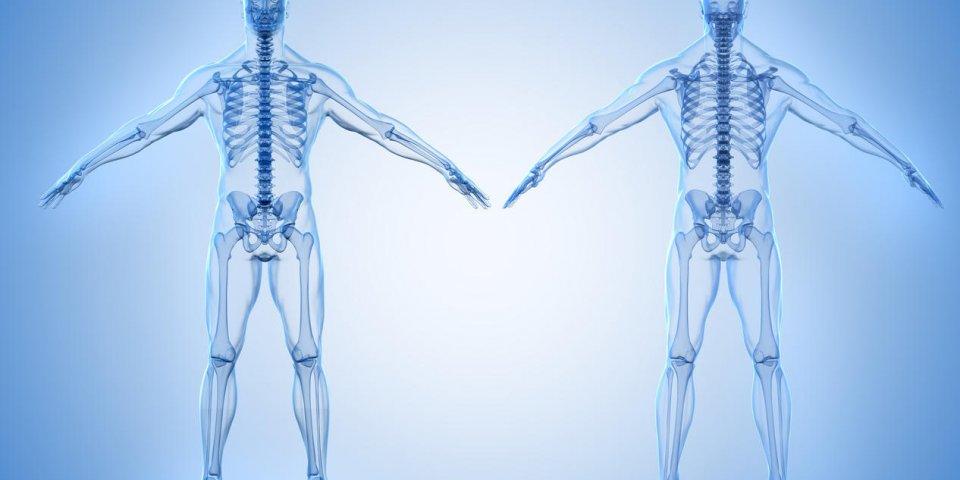 Cancer des os : symptômes, traitements, espérance de vie du cancer osseux