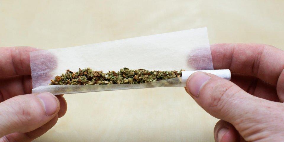 Cannabis : la consommation régulière augmente les risques d'infarctus