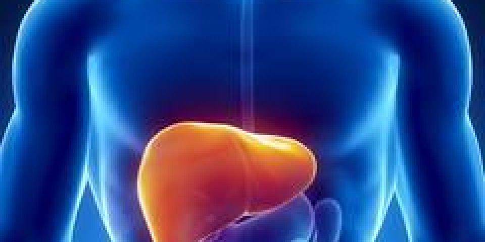 Cancer du foie : les signes d'alerte