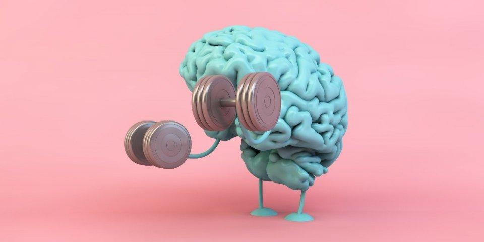 Cerveau : 5 clés de scientifique pour garder votre mémoire le plus longtemps possible