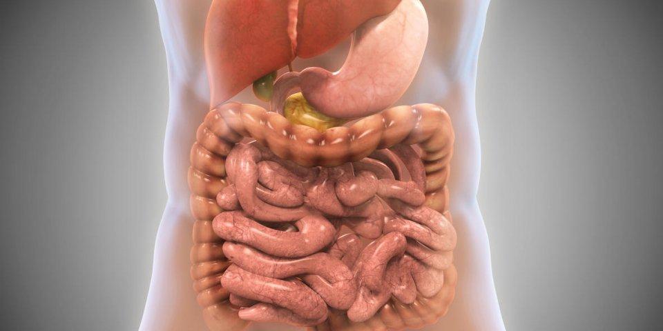 Colite ulcéreuse, ischémique... que faire pour soulager une crise de colite ?