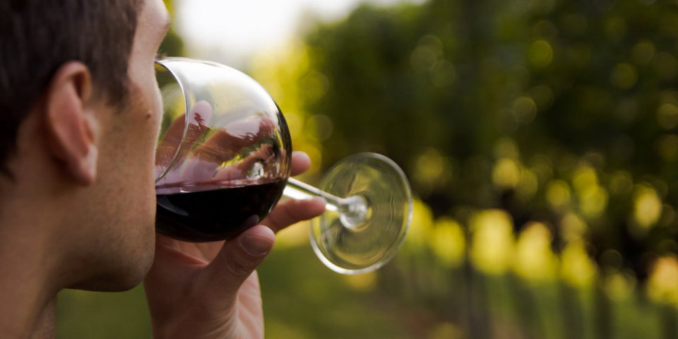 [Info ou intox] Boire un verre de vin par jour, vraiment bon pour la santé ?