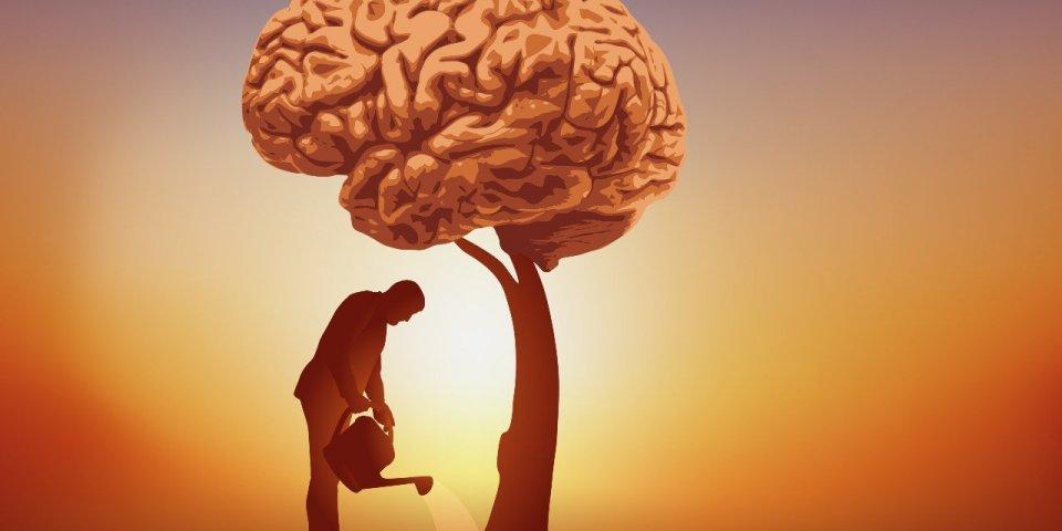 Ikigaï : les clés pour trouver votre raison d'être