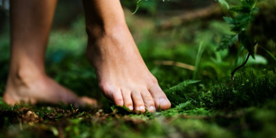 bare feet of woman standing barefoot outdoors in nature, grounding and forest bathing concept