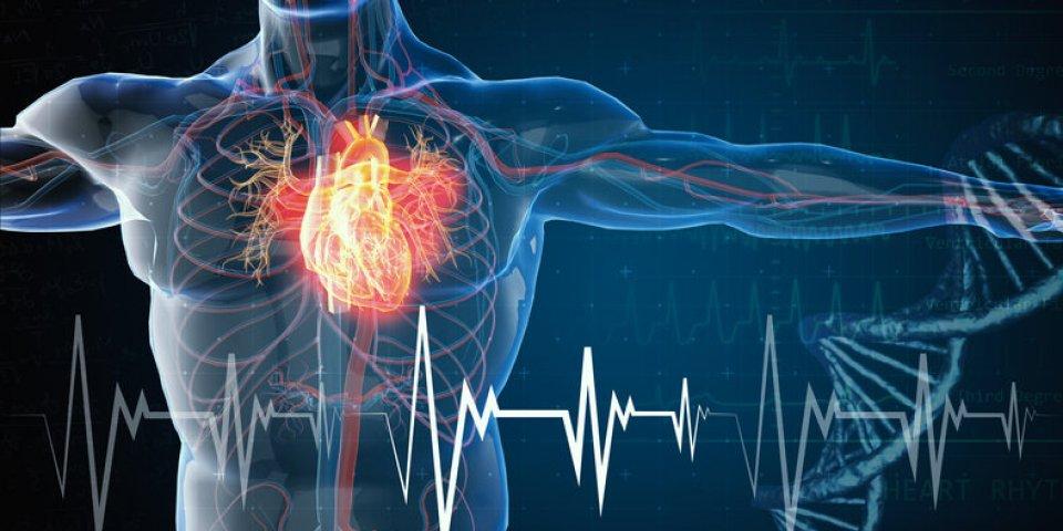 Anévrisme aortique : un test du pouce pour savoir si vous êtes à risque.