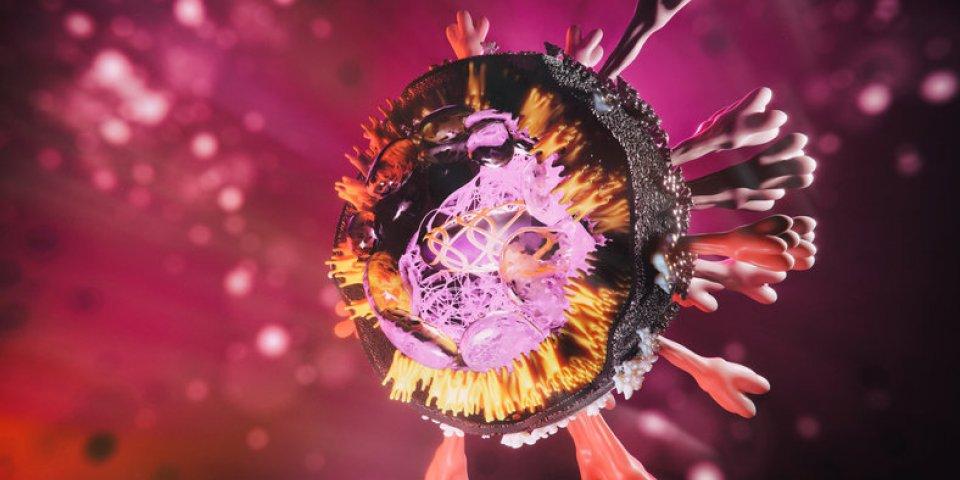 Covid-19 : les variants britannique et californien ont fusionné en un nouveau virus